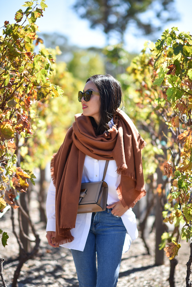 fall-outfit-scarf-2